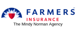 The-Mindy-Norman-Agency